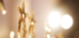 star-trophy-award.jpg