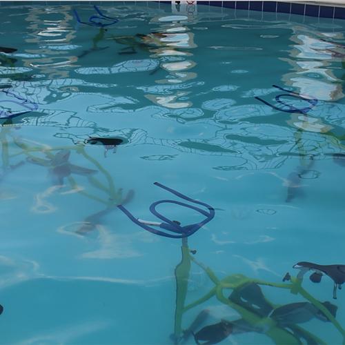 SplashCycle Fun!