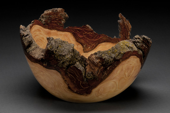 Natural Bark Edge Elm Burl Bowl