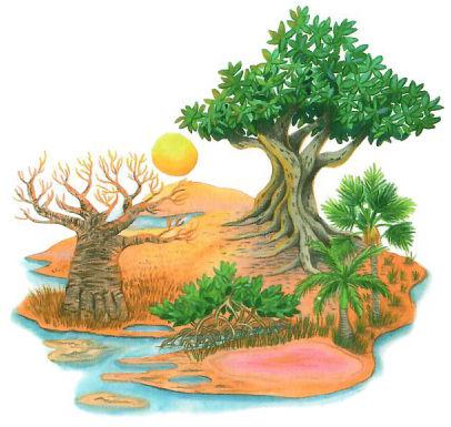 Paysage Afrique2.jpeg