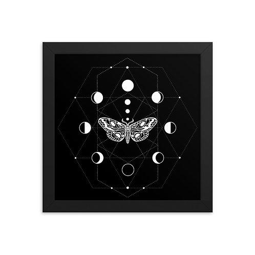Moth Framed poster