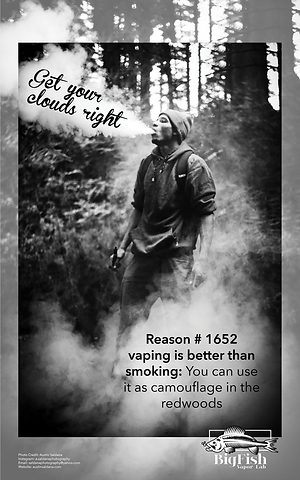 VapePosters.png