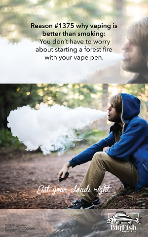 VapePosters4.png