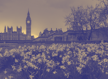 Hot Topic Highlight - RICS Policy Priorities for 2019/2020