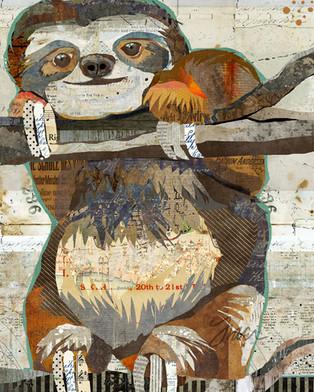 Smiling Tree Sloth