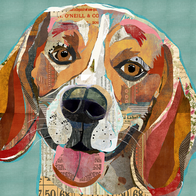 cheerful-collage-beagle.web.png