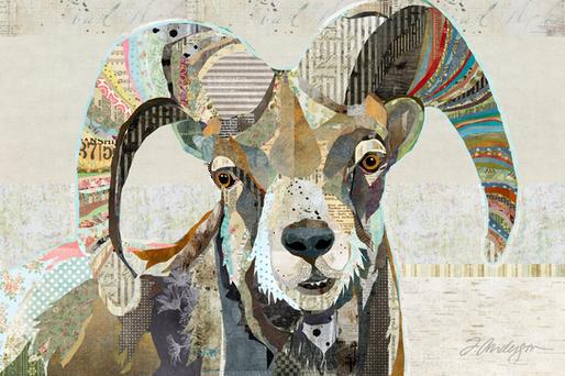 wild-bighorn-sheep-web.png