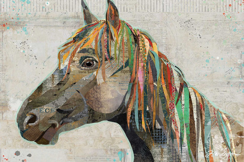 Pryor Mountain Wild Horse