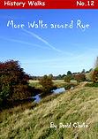 Book 12 Cover new v2.jpg