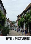 Rye Cover Mermaid Street v2.jpg