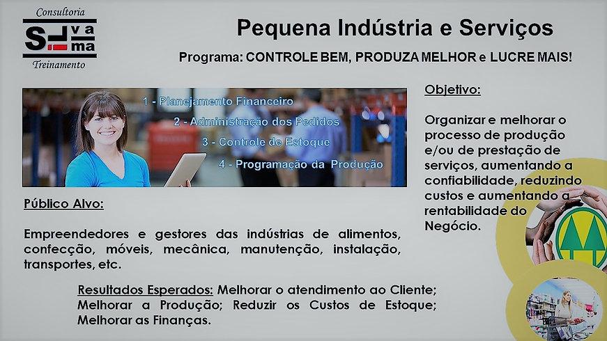 Associacao-Servicos-Palestra-Industria