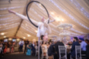 3.Free Standing Aerial Hoop.jpg
