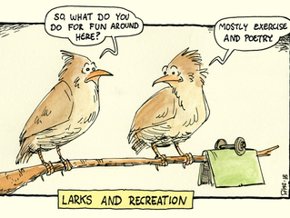 Larky Lark