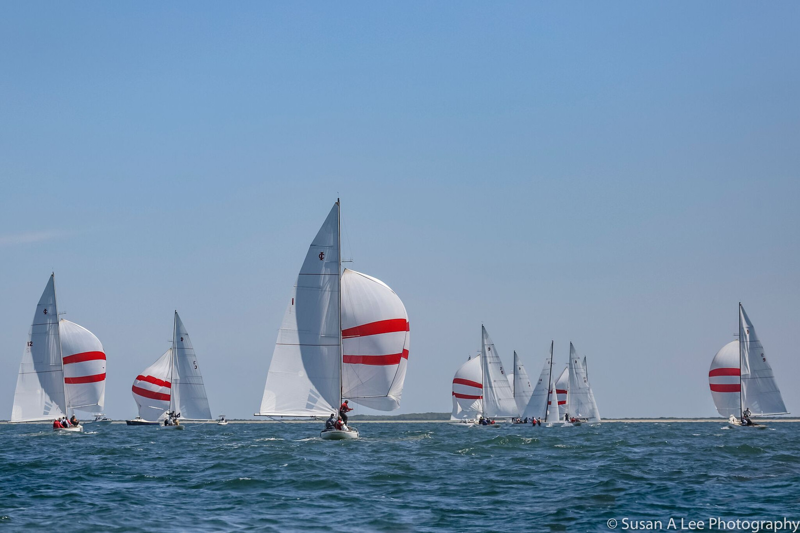 Red and White Sails