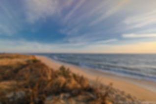 WebsitesusanaleeSusanALeePhotography-2_p