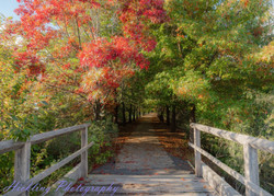 Autumn in Beechworth