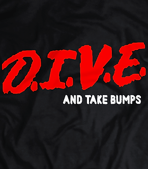 HEEL SHIRTS, PRO WRESTLING TEE'S. INDIE WRESTLING T SHIRT, DIVE.D.I.V.E into the indies take bumps and undersell,pro wrestlin