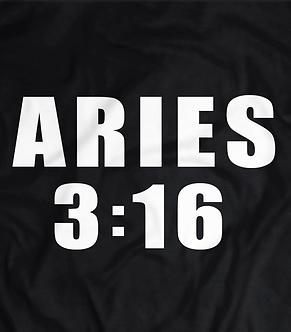 The Austin Aries era, Austin 3:16 parody, 205 live,pro wrestling tshirt, heelshirts, heel shirts.professional wrestling tees