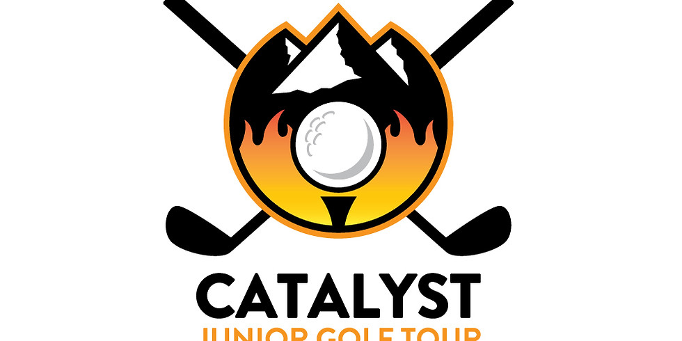 Catalyst Cup Series 1