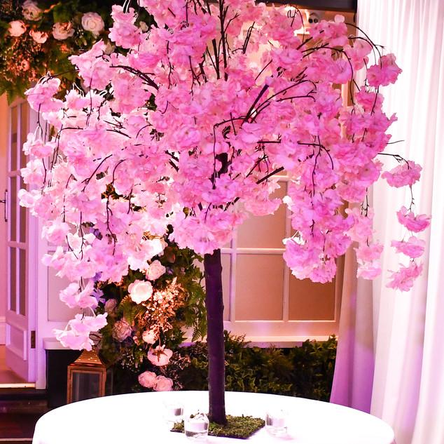 Pink blossom tree.jpg