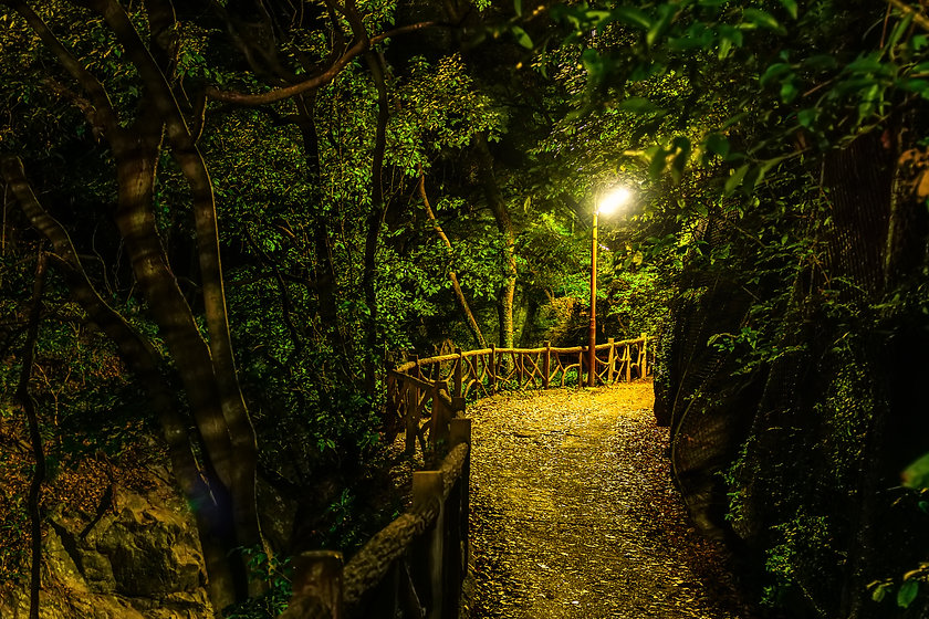 mysterious path with lantern in dark hor