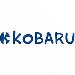 kb m logo.PNG