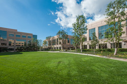 Manicured Park-Like Grounds