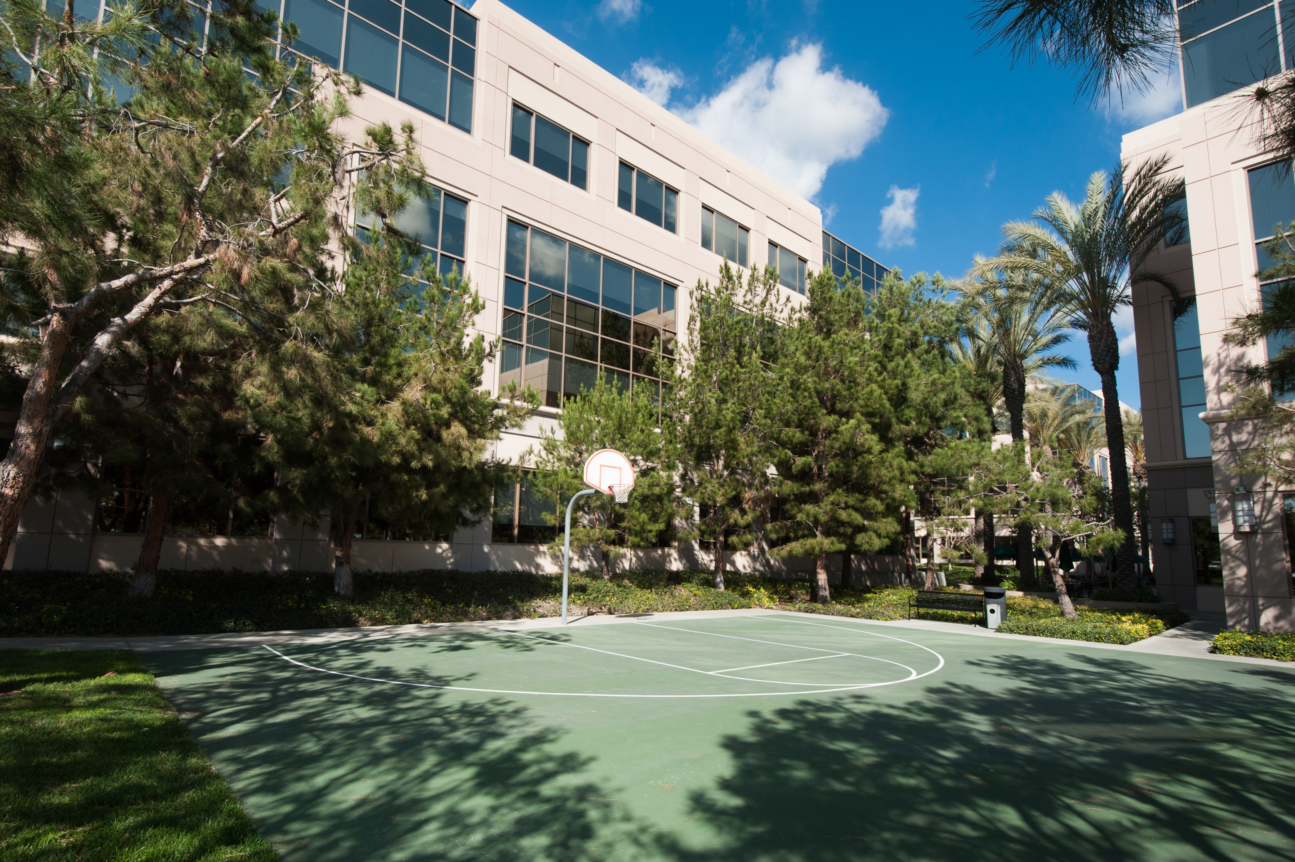 On-Site Basketball Court