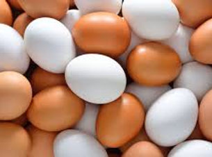 white-brown eggs.jpg