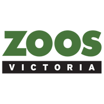 footer-logo-square.png