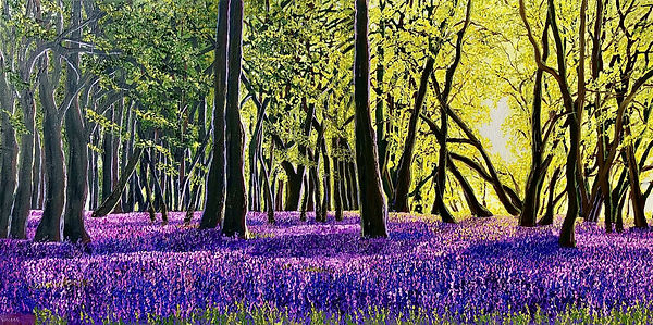 Vincent Smith Art - Bluebell Sunset IV R