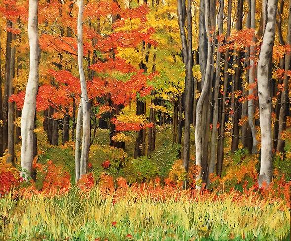 Vincent Smith - Autumn Forest