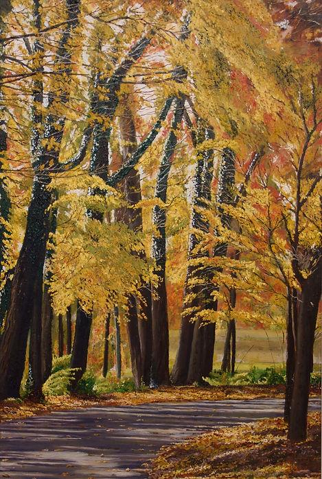Vincent Smith Art - Woodland Walk