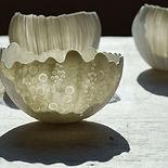 bols porcelaine.jpg