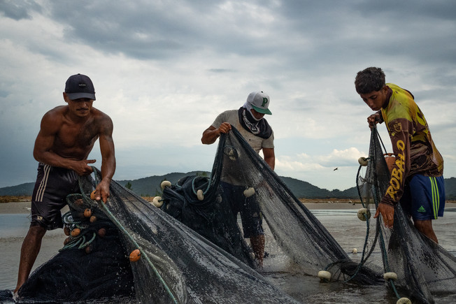 Three caiçaras men pull the fishing net to check what they managed to catch during artisanal manjuba (Anchoviella lepidentostole) fishing in Ilha Comprida, Brazil, Sao Paulo state, February 19, 2020.