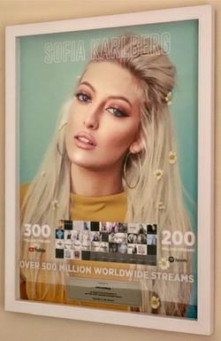 Sophia Karlberg 500x700mm