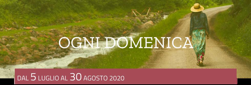 Schermata 2020-07-01 alle 19.20.36.png