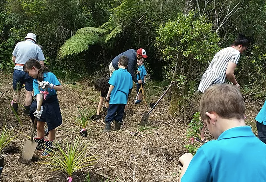 Kerikeri Primary School helping to reduce our footprint with planting along the Wairoa Stram