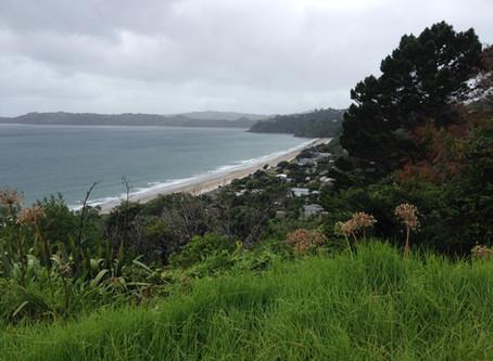 Waiheke Island aiming for carbon neutrality