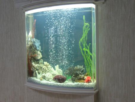 Akwarium akrylowe się rysuje