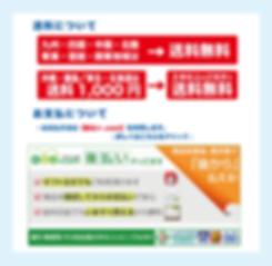 アクアエース-サイト-Ver.2-5.png