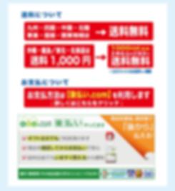 アクアエース-サイト-Ver.3-8.png