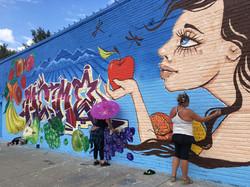 Plaza Walls, OKC 2019