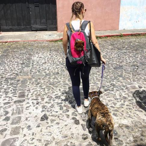 Wir reisen zusammen