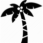 palm-tree-512.png