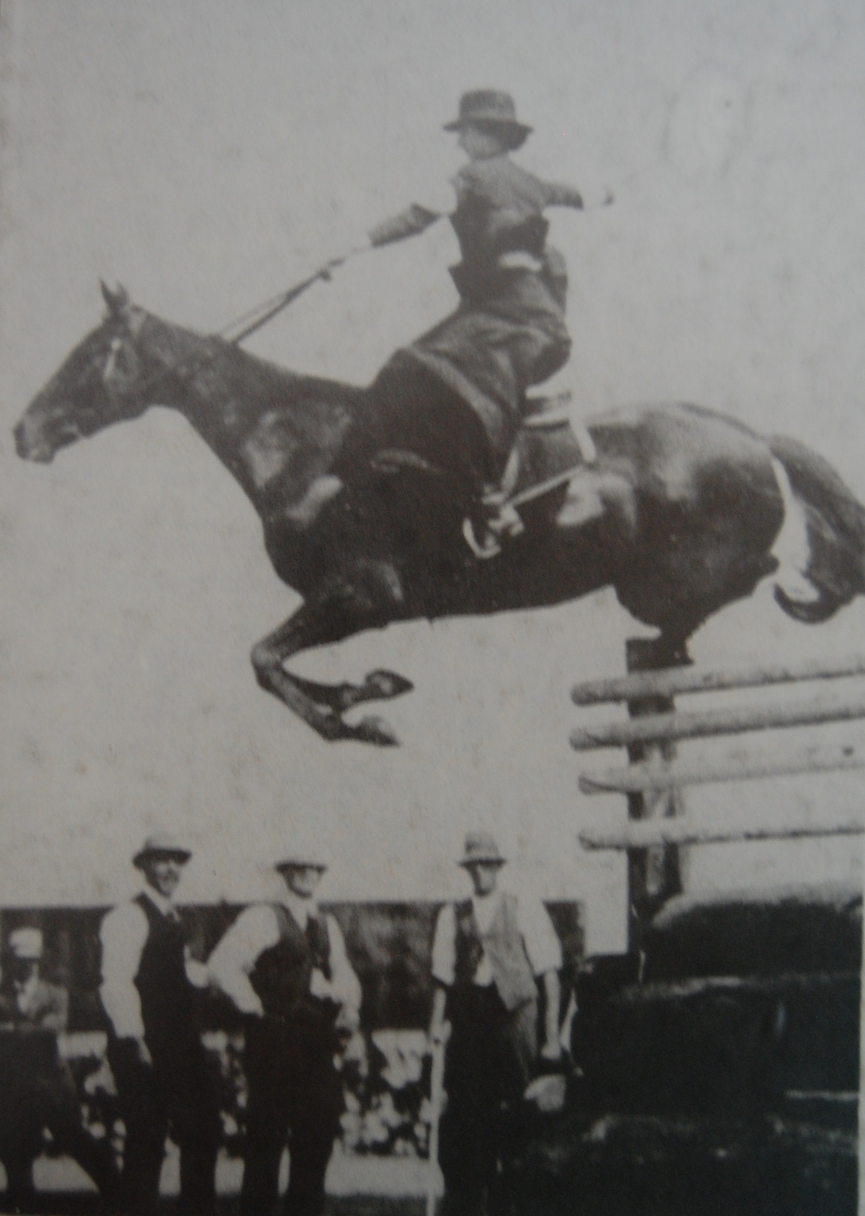 Emu Plains, ridden by Mrs Stace, champion Lady High Jump, 6ft. 6in., world record side saddle, set a