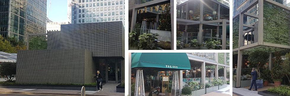 banner_ivy_restaurant.jpeg
