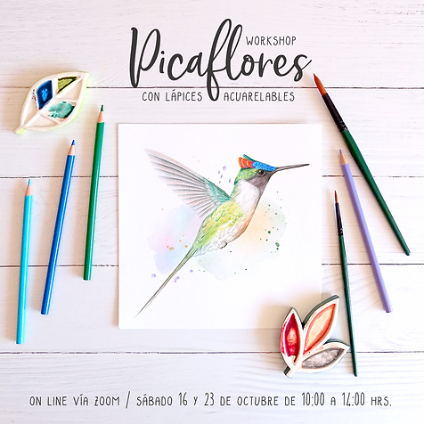 Picaflores con lápices acuarelables_octubre.png