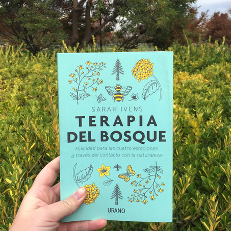 Terapia de Bosque