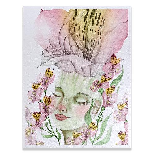 Retrato Alstroemeria - Print 20x25
